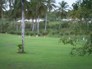 Puerto PlataPuerto Plata vacation rental by owner