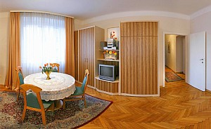 Vienna Vienna vacation rental by owner